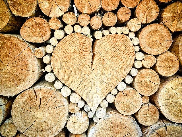 tanie drewno z ukrainy