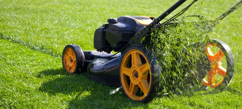 kosiarki do trawy spalinowe