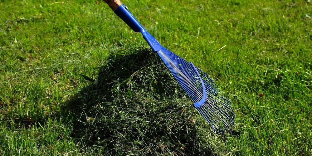drugi pokos trawy